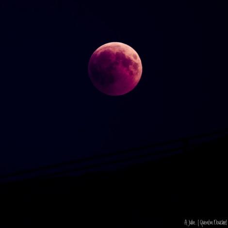 IMG_5928-eclipse_lune_2018-19.jpg